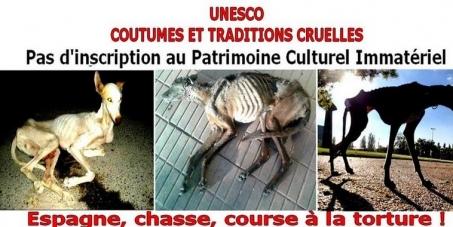 Irina BOKOVA, Directrice Générale UNESCO: Contre l'inscription au PCI de la chasse avec les lévriers en Espagne Bannie10