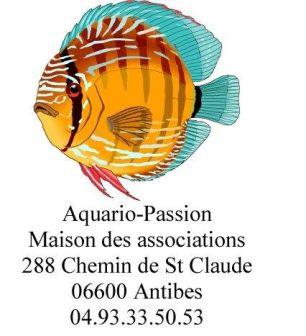 Présentation d'Aquario-passion (Association 1901 à Antibes 06600)  Logo_a11