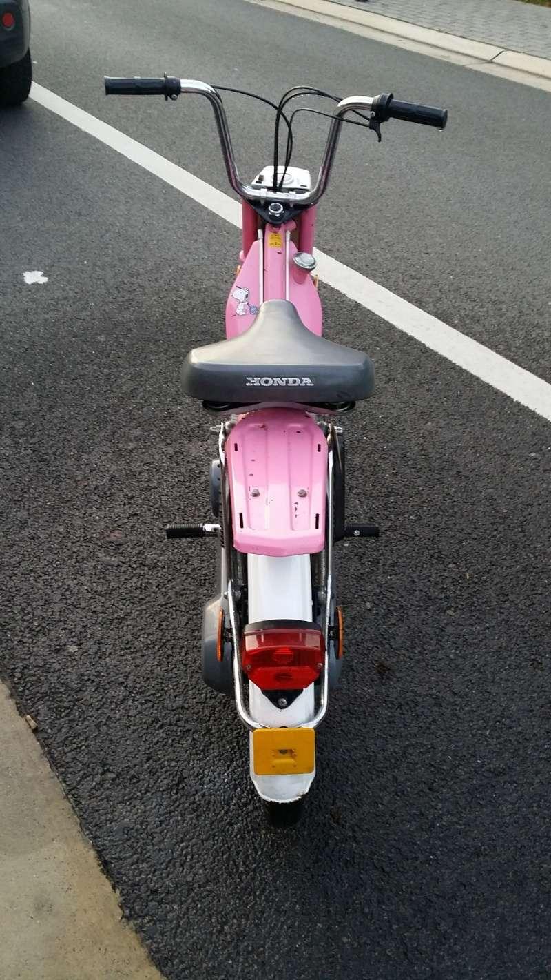 Mes Honda Camino 03311