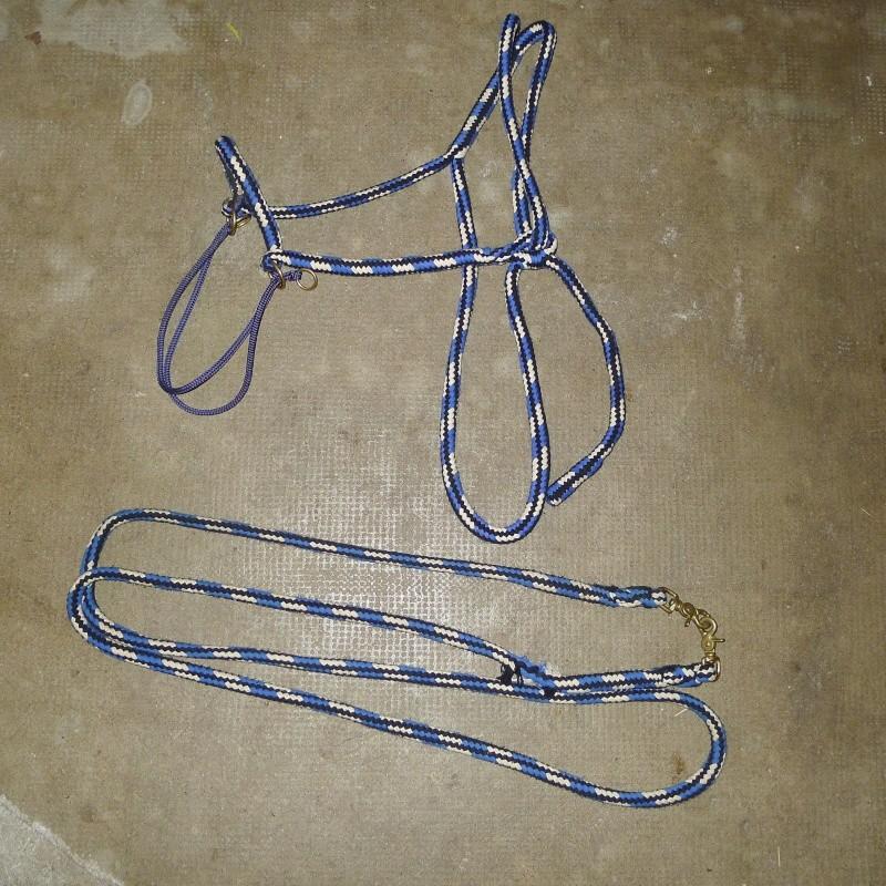 Divers materiels d'équitations/écuries à vendre P1050617