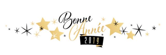 Bonne année 2019 à tous ...!!! 201910
