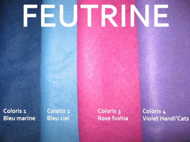 Chats feutrine Colori12