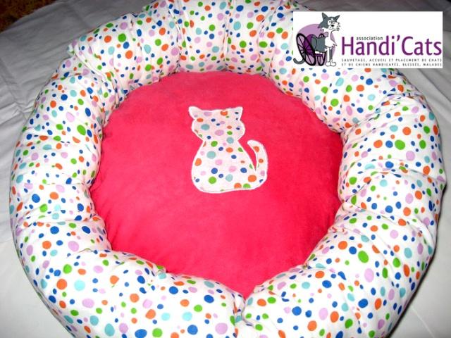 Paniers Handi'Cats !! Coussi11