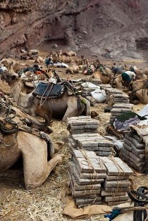 DESERT DE DALLOL (ETHIOPIE) Dallol11