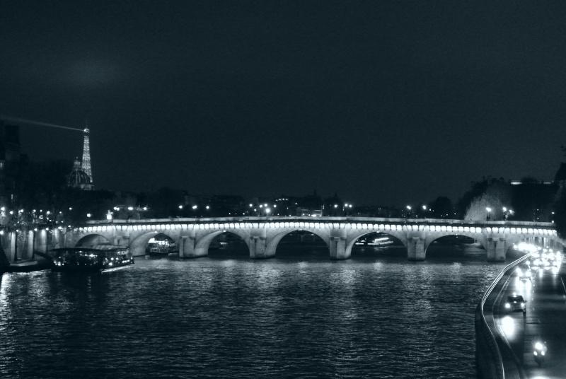 Paris ville lumière dans toute sa splendeur - Page 13 01210