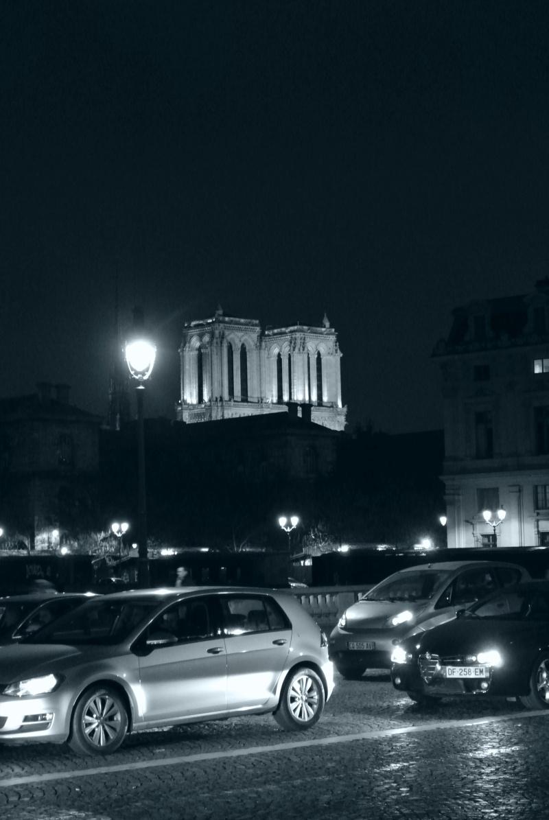 Paris ville lumière dans toute sa splendeur - Page 13 01610