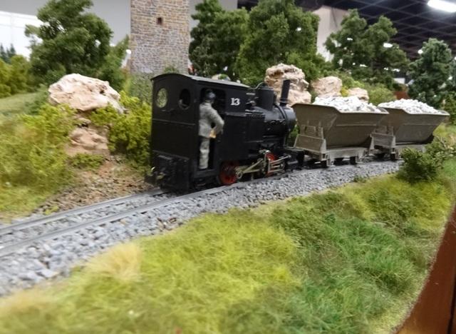 Int. Modellbahn-Ausstellung Köln, 2014 Dsc07569
