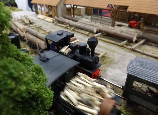 Int. Modellbahn-Ausstellung Köln, 2014 Dsc07576