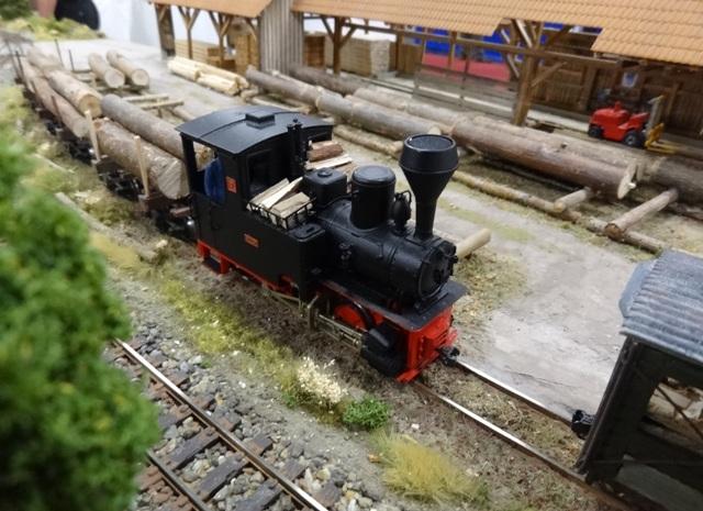 Int. Modellbahn-Ausstellung Köln, 2014 Dsc07577