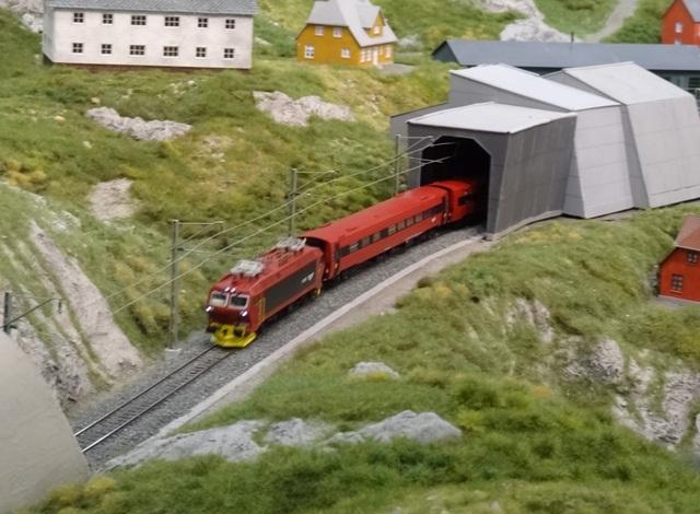 Int. Modellbahn-Ausstellung Köln, 2014 Dsc07582