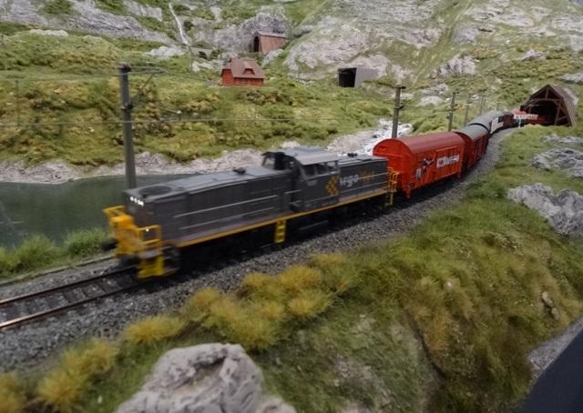 Int. Modellbahn-Ausstellung Köln, 2014 Dsc07589