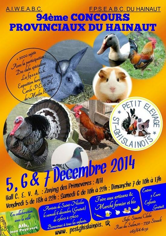 concours provinciaux 4/ 5 et 6 decembre Provin13
