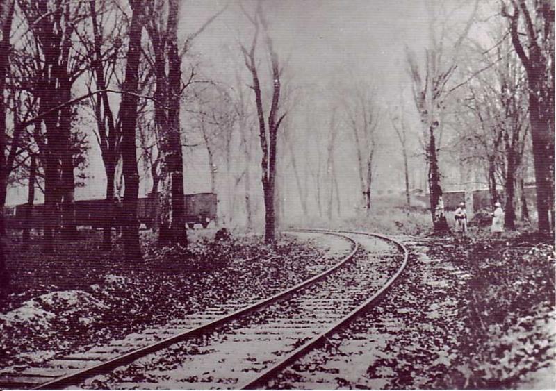 11 novembre 1918 Armist10