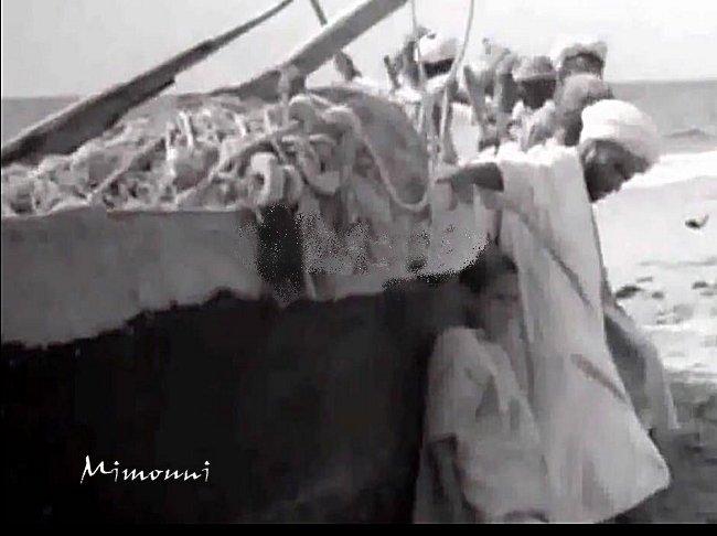 تفنيت 1950 هل خطر علي بالكم أن تعيشوا قصة ألأسلاف صيادو الأسماك بشاطيء تفنيت  في الخمسينيات  Tifnit13
