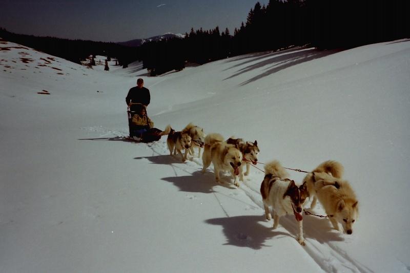 Recherche photos de Groenlandais Pict0010