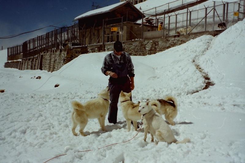 Recherche photos de Groenlandais Pict0019
