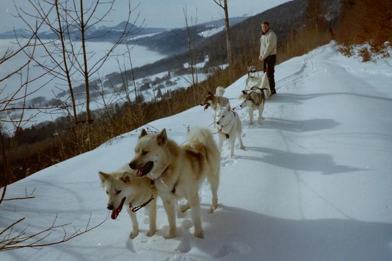 Recherche photos de Groenlandais Pict0027