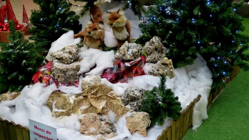 Décorations dans nos jardineries P1340716