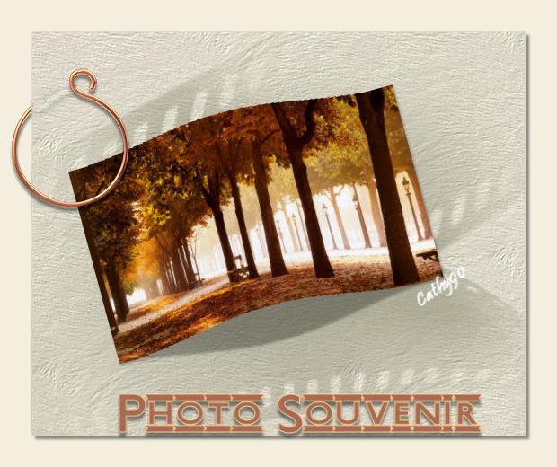 Cours PSP-37-Photo bombée Cours318