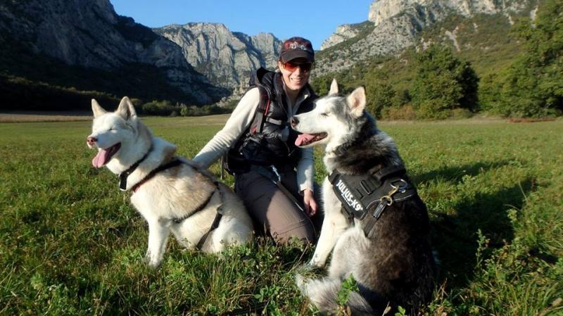 BLUE EYES  8ans, Husky sauvé de Roumanie ASSO65 - Page 3 Blue_e10