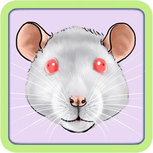[GÉNÉTIQUE]  Types de poil, morphologie et couleurs d'yeux du rat Roses10