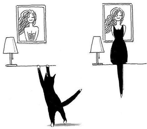 Images du jour sur les chats 10805711
