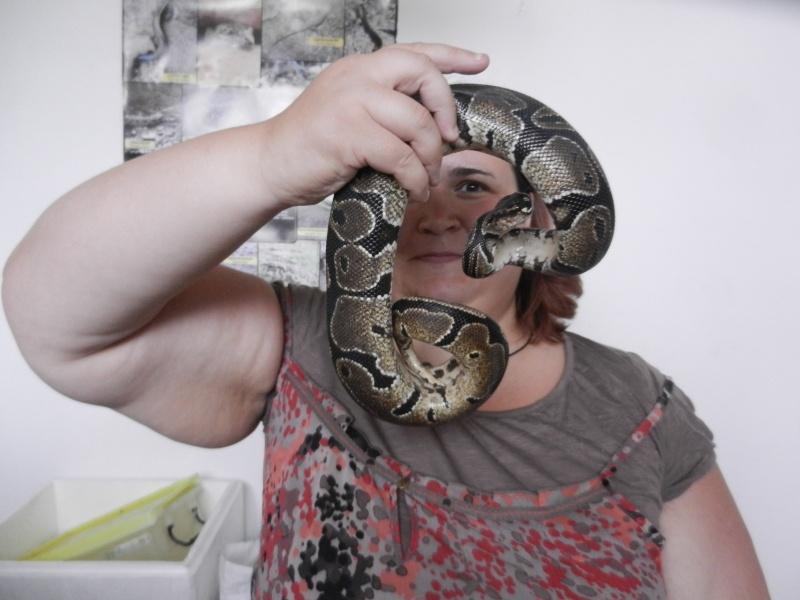 Mon expérience d'ASV et de Soigneur Animalier au Mexique Photo_27