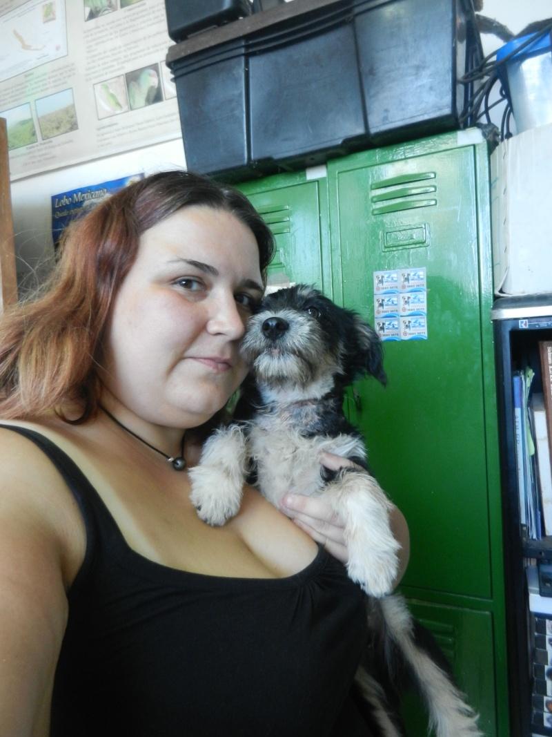 Mon expérience d'ASV et de Soigneur Animalier au Mexique Photo_37
