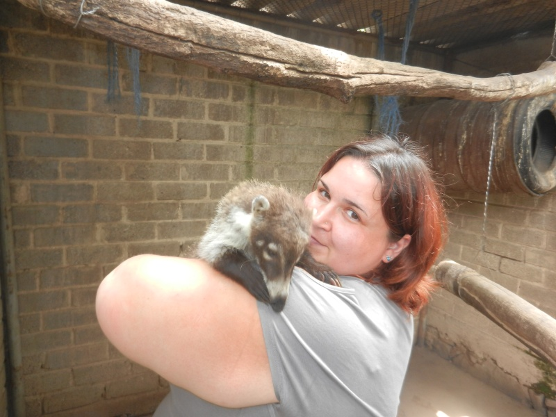 Mon expérience d'ASV et de Soigneur Animalier au Mexique - Page 2 Photo_42