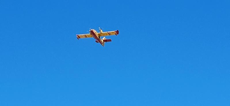 incendie de pinèdes à Istres 20200812