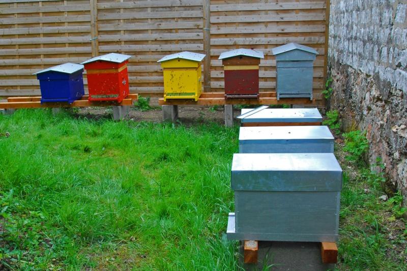 les ruches peintes en rouge - Page 2 Ruches10