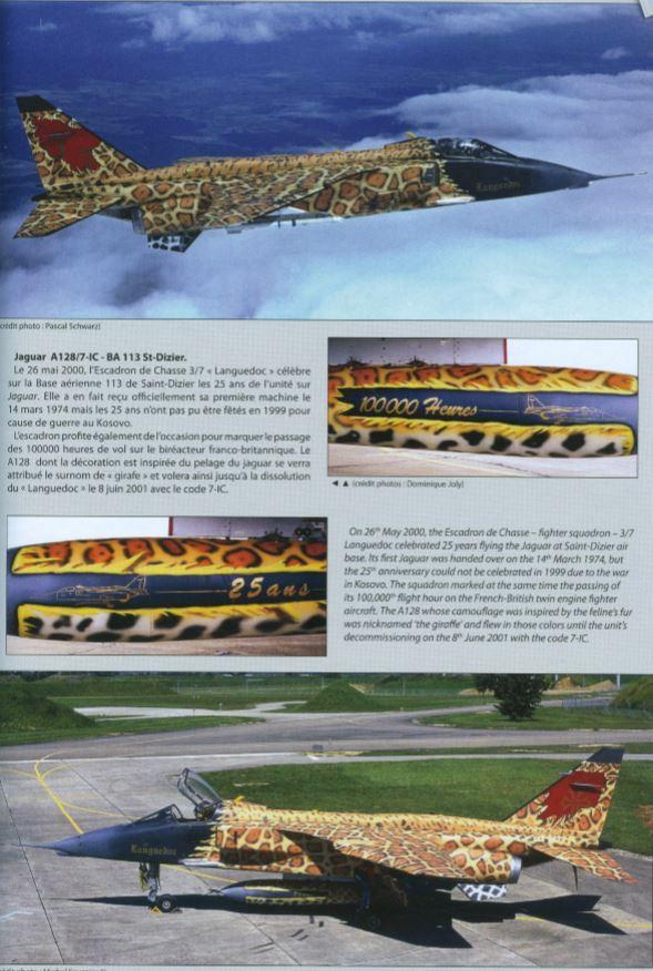 DECORATIONS SPECIALES des Aéronefs de la Défense.  2000 - 2011 Delta_17