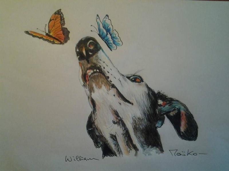 Florence Squelette de Merida à l'adoption  Scooby France    Adoptée  - Page 3 13814510