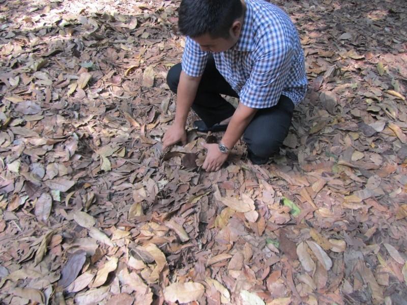 Quelques pics de mon trip au Vietnam Img_0724
