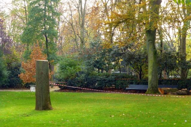 Choses vues dans le jardin du Luxembourg, à Paris - Page 3 Photo_11