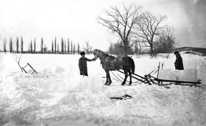 Quelle est votre méthode pour passer au travers de l'hiver? 1875_t10