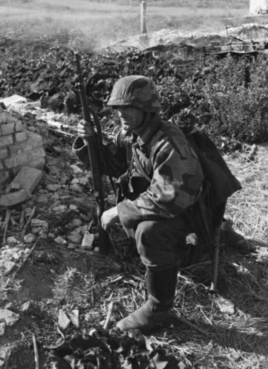 L'influence du camouflage allemand ww2, de nos jours. - Page 3 2wf10