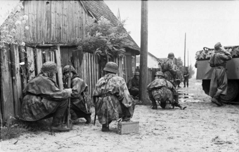 L'influence du camouflage allemand ww2, de nos jours. - Page 3 E810