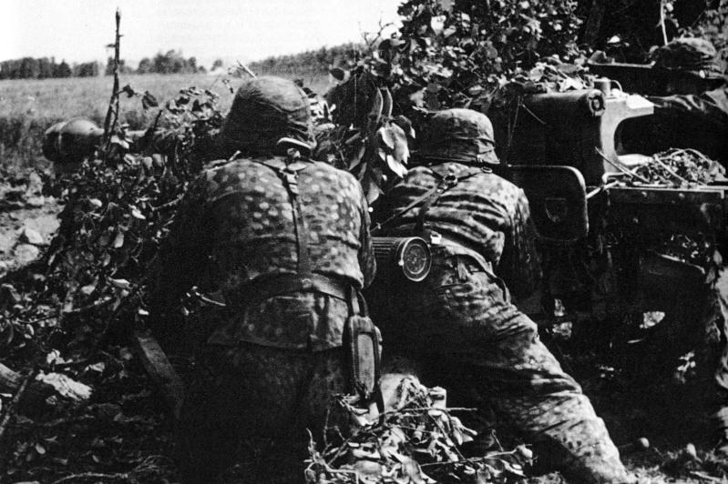 L'influence du camouflage allemand ww2, de nos jours. - Page 3 Pp210