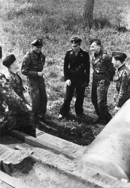 L'influence du camouflage allemand ww2, de nos jours. - Page 3 Pp310