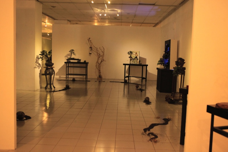 Multimedia Bonsai Presentation - IBA&CB 2014 1110