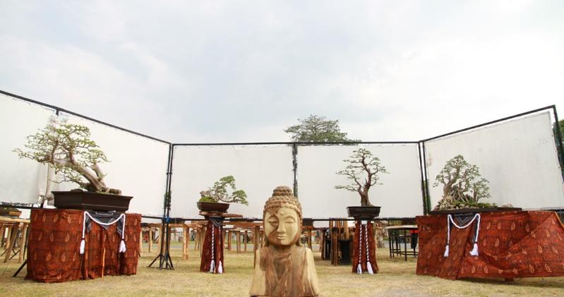 Multimedia Bonsai Presentation - IBA&CB 2014 1410