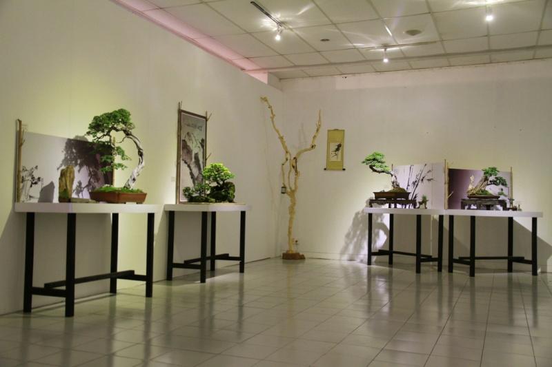 Multimedia Bonsai Presentation - IBA&CB 2014 210