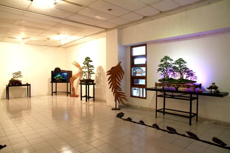 Multimedia Bonsai Presentation - IBA&CB 2014 310