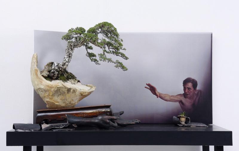 Multimedia Bonsai Presentation - IBA&CB 2014 4110