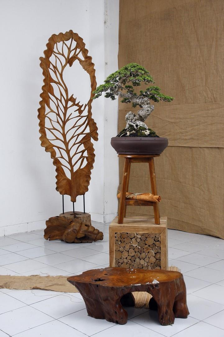 Multimedia Bonsai Presentation - IBA&CB 2014 4710