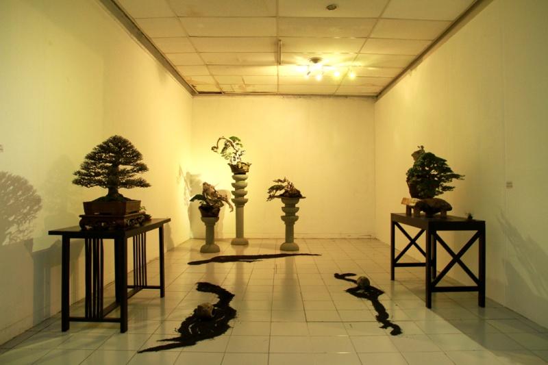Multimedia Bonsai Presentation - IBA&CB 2014 610