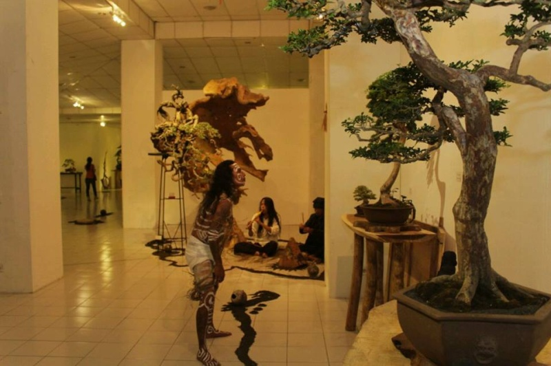 Multimedia Bonsai Presentation - IBA&CB 2014 Q10