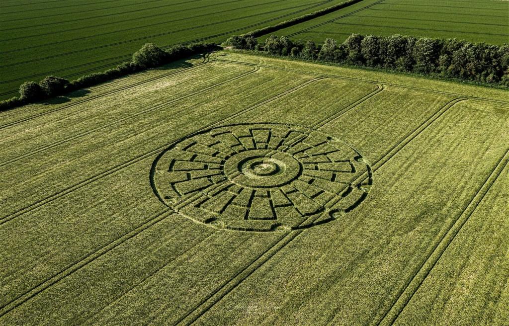 crop circles 2020 10109310