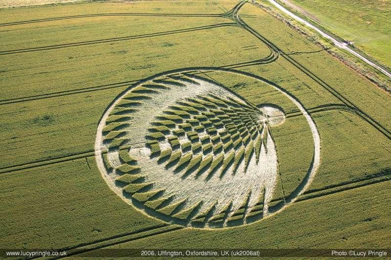 """Crop circle : Comment des youtubeurs ont berné des """"experts"""" en extraterrestres 2006_010"""